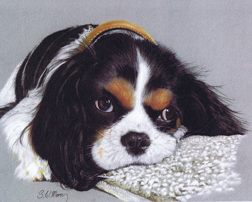 pastel-dog-portraits