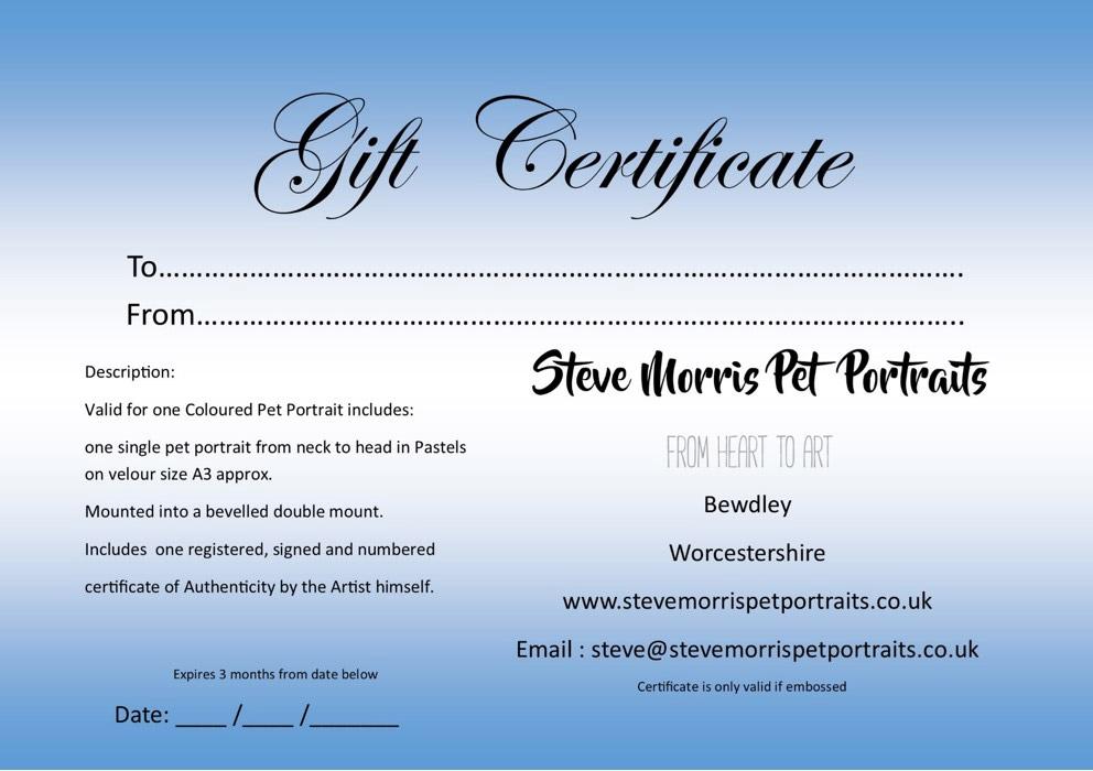 steve-morris-pet-portraits-gift-certificates