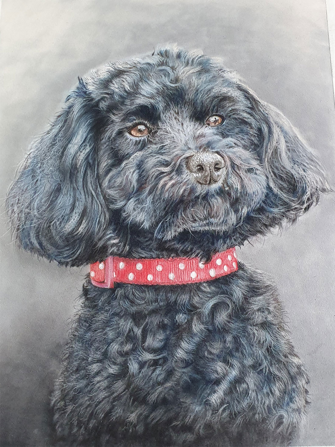 pastel-pet-portrait 2020